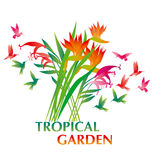 Tropical exotic decorative flower Stock Photo