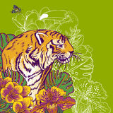 Tropical Exotic Floral Background with Tiger Stock Image