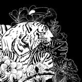 Tropical Exotic Floral Background with Tiger Stock Images