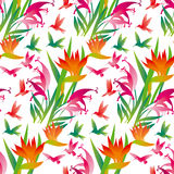 Tropical exotic flower seamless pattern Royalty Free Stock Photos