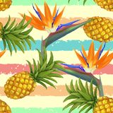 Tropical exotic flowers and pineapple seamless Stock Photos