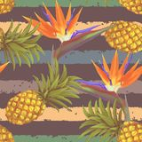 Tropical exotic flowers and pineapple seamless Stock Photography