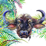 Tropical exotic forest, green leaves, wildlife, buffalo, watercolor illustration. watercolor background unusual exotic nature Royalty Free Stock Photos