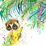 Tropical exotic forest, green leaves, wildlife, lemur, watercolor illustration. watercolor background unusual exotic nature Royalty Free Stock Images