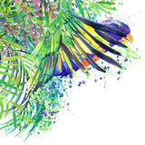 Tropical exotic forest, green leaves, wildlife, parrot bird, watercolor illustration. watercolor background unusual exotic nature Stock Images