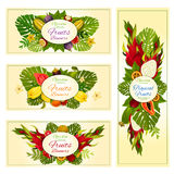 Tropical and exotic fruit banners for food design Stock Photography