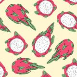 Tropical exotic fruit dragon fruit. Hand draw seamless pattern. royalty free illustration