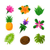 Tropical Exotic Fruits And Flora Set Of Icons. Tropical Plants And Fruits Set In Simple Realistic Cartoon Flat Vector Design  On White Background Royalty Free Stock Images