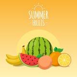 Tropical exotic fruits. Summer foods background design. Eps 10 vector illustration Stock Photo