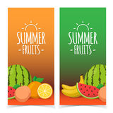Tropical exotic fruits. Summer foods banners design. Eps 10 vector illustration Royalty Free Stock Photos