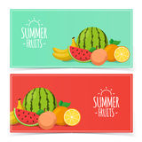 Tropical exotic fruits. Summer foods banners design. Eps 10 vector illustration Royalty Free Stock Images