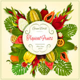 Tropical and exotic fruits vector poster Royalty Free Stock Images