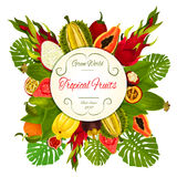 Tropical and exotic fruits vector symbol Royalty Free Stock Images