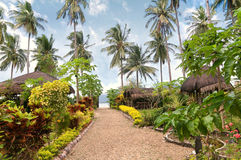 Tropical exotic garden Stock Image