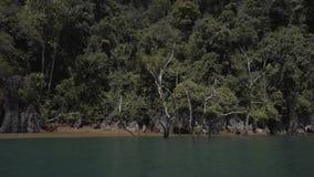 Tropical Thai jungle lake Cheo lan, island, wild mountains nature national park ship yacht rocks. Tropical exotic green wild mountains sinset jungles on stock video