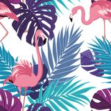 Tropical exotic leaves flamingo pattern violet. Tropical rain forest jungle palm tree mostera leaves and exotic flamingo birds seamless pattern. Ultra violet Royalty Free Stock Image