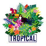 Tropical Exotic Plants Colorful Composition. Tropical island flora and fauna colorful composition poster with exotic plants leaves and orchid flowers vector Royalty Free Stock Image