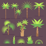 Tropical exotic plants and palm trees vector flat icons Royalty Free Stock Images