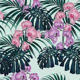 Tropical exotic plants seamless pattern, monster, palm leaves and pink violet orchid flowers. vector illustration