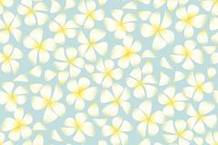 Tropical exotic plumeria flowers in simple elegant style. On pale blue background. Abstract decorative frangipani floral vector illustration. Seamless pattern Royalty Free Stock Photo