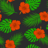 Tropical, exotic seamless pattern with flower hibiscus, monstera and palm leaf on black background Stock Photos