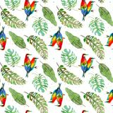 Seamless pattern of tropical palm leaves and colorful birds on white background. Watercolor illustration stock illustration