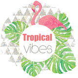 Tropical exotic summer print with palm leaves and flamingo Royalty Free Stock Photos