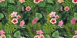 Free Tropical Exotic Wallpaper With Hibiscus Flowers Stock Photography - 211894952