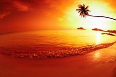 Tropical fantasy. Tropical beach at sunset, Mak island, Thailand stock photos