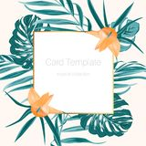 Tropical fern greenery orange flower card frame. Rectangular square golden border frame decorated with fern greenery and exotic tropical orange flower. Green Stock Photos
