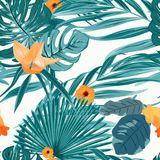 Tropical fern greenery orange flower pattern. Tropical fern greenery with exotic orange flowers seamless pattern on white background. Green turquoise jungle palm Royalty Free Stock Photography