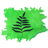 Tropical fern leaf on green watercolor texture. Abstract natural background. Tropical fern leaf on green watercolor texture. Abstract natural, organic background Royalty Free Stock Photography