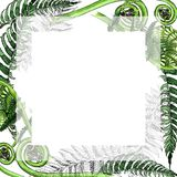 Tropical fern leaves frame in a watercolor style. Stock Photo