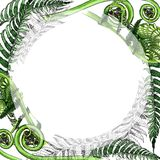 Tropical fern leaves frame in a watercolor style. Stock Photography