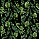 Tropical fern leaves pattern in a watercolor style. Royalty Free Stock Photos