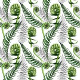 Tropical fern leaves pattern in a watercolor style. Royalty Free Stock Photography