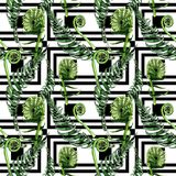 Tropical fern leaves pattern in a watercolor style. Stock Photos