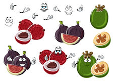 Tropical fig, lychee and feijoa fruits. Cartoon fresh fig, exotic lychee and green tropical feijoa fruits  on white. Funny fruits characters for vegetarian Stock Image