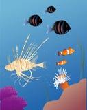 Tropical Fish royalty free illustration