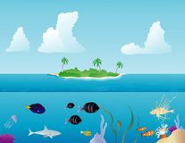 Tropical Fish. Various tropical fish swimming around on a reef and a tropical island in the background Stock Image
