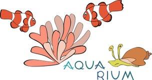 Tropical Fish and actinium Stock Photo