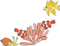 Tropical Fish and actinium Stock Image