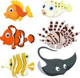 Tropical fish cartoon. Illustration of Tropical fish cartoon stock illustration
