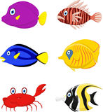 Tropical fish cartoon Royalty Free Stock Photo