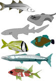 Tropical fish collection 1 Stock Photo