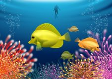 Tropical fish in coral sea. Marine-themed background with an underwater scene with exotic fish, anemones and coral. Vector illustration Stock Photo