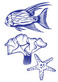 Tropical fish, coral and starfish. Illustration on white background for design Royalty Free Stock Images