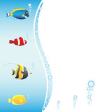 Tropical fish frame for your design Royalty Free Stock Images