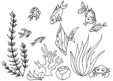 Tropical fish hand drawn design set. Royalty Free Stock Photography
