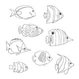 Tropical fish icon set. Vector isolated characters. Butterflyfish, Clown Triggerfish, Damsel, Anemonefish, Angelfish, Clownfish royalty free illustration